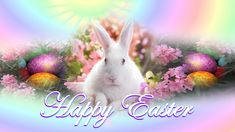 Happy Easter to all of our Book Community friends...