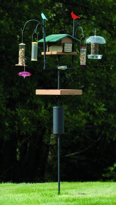 Wild Birds Unlimited: The Advanced Pole System - Looks Great, Stays Straight!