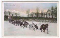 Husky Dog Sled Team Alaska 1910s postcard. $5.00, via Etsy.