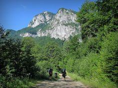 Góry Capatani Mount Rainier, Mountains, Nature, Travel, Geography, Naturaleza, Viajes, Destinations, Traveling