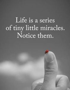Are you looking for true quotes?Check out the post right here for very best true quotes ideas. These hilarious quotes will brighten your day. Spiritual Quotes, Wisdom Quotes, True Quotes, Great Quotes, Positive Quotes, Quotes To Live By, Motivational Quotes, Inspirational Quotes, Quotes On Gratitude