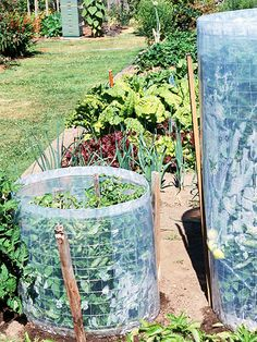 Make your tomato cage serve double duty by wrapping a wire mesh cylinder (rabbit fencing works well) with clear polyethylene. The wire cylinder supports the plant and the plastic wrap acts as a mini greenhouse boosting tomato growth during cool weather. As summer heats up, remove the plastic covering to make harvest easier, improve airflow through the plant's leaves, and reduce disease problems.