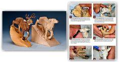 Carving Majestic Buck - Wood Carving Patterns and Techniques | WoodArchivist.com