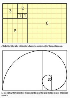 The Golden Ratio: a designer& guide. The Golden Ratio is a beautifully simple piece of mathematical theory that can help make your designs feel well proportioned and pleasing on the eye. We explain how to use it. Graphisches Design, Logo Design, Math Art, Grafik Design, Geometric Art, Art Tips, Sacred Geometry, Art Techniques, Art Lessons