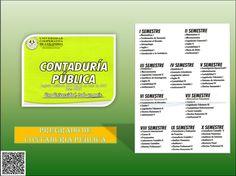 PREGRADO CONTADURIA PUBLICA