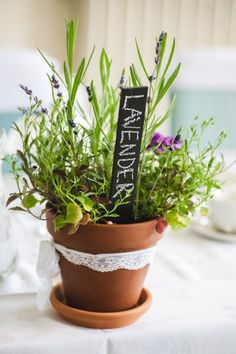 DIY little herbs pots and the guests can take them home at the end of the night OR use them to identify your tables instead of numbers.