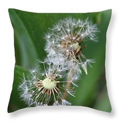 """That Moment Throw Pillow 14"""" x 14"""" by Rumyana Whitcher"""