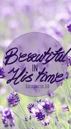 ECCLESIASTES 3:11 - He has made Everything Beautiful in His time!