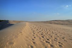 Sahara in Central Europe? Of course not! Those are sand dunes in Slowinski National Park, Poland