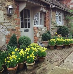 90 Stunning Spring Garden Ideas for Front Yard and Backyard Landscaping - HomeSpecially Garden Cottage, Diy Garden, Home And Garden, Garden Ideas, Cozy Cottage, Spring Plants, Spring Garden, Spring Bulbs, Spring Flowers