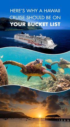 From Maui to Kauai, discover the Aloha Spirit of Hawaii! Check out why you should cruise Hawaii. Hawaii Vacation, Vacation Places, Cruise Vacation, Dream Vacations, Vacation Trips, Vacation Spots, Places To Travel, Places To Go, Brazil Vacation