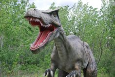 Field Station Dinosaurs in Secaucus, NJ - we saw this place on the news and totally need to take the dude here!!