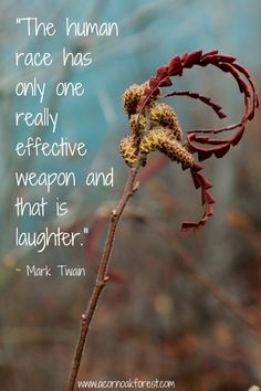 The human race has only one really effective weapon and that is laughter - Mark Twain