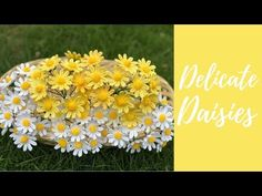 Welcome to my crochet channel. Here you will find videos about to make all types of crochet flowers. Crochet Daisy, Crochet Leaves, Crochet Flowers, Flower Drawing Images, Flower Images, Poncho Knitting Patterns, Crochet Patterns, Orchid Leaves, Flower Chart