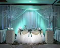 Tulle skirt for head table. A little fancy, but I like it