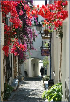 "Calle en Cadaqués, Catalunya, Spain --- FREE DEMO - www.DrawFLOWERS101.com - SAVE addt'l 10.00 OFF SALE price w code ""Pinterest"""