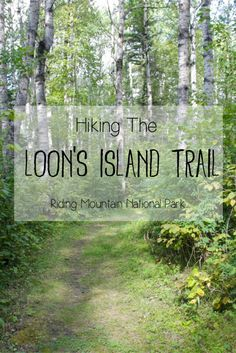 Loon's Island is a short and easy hiking trail located at Lake Katherine in Manitoba's Riding Mountain National Park. I hiked this trail on the morning of my first day in this bea… Riding Mountain National Park, Mountain Park, Mountain High, Mountain Hiking, Hiking Training, Hiking Essentials, Hiking Photography, Canadian Travel, Lake George