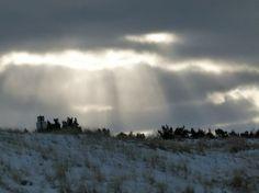 Winterliche Malreise auf Rügen | Winter an der Ostsee (5) (c) Frank Koebsch #Winter #Schnee #Mecklenburg-Vorpommern #Rügen