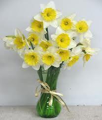 daffodil bouquet Daffodil Bouquet, Daffodils, Bulbs, Glass Vase, Dream Wedding, Flowers, Decor, Lightbulbs, Decoration