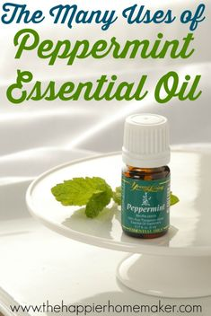Essential Oils 101: tons of uses for Peppermint (and a Peppermint Oil giveaway!)
