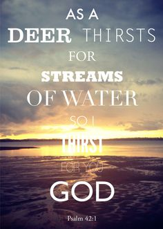 """Psalm 42:1-2  """"As the deer pants for streams of water, so my soul pants for you, O God. My soul thirsts for God, for the living God.  When can I go and meet with God?"""""""