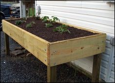 waist high garden - helpful for those with bad knees. Plus you could store things underneath :)
