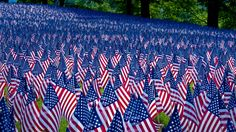 Field of flags displayed for Memorial Day, Boston, Massachusetts (© Paul Marotta/Getty Images) – 2014-05-26