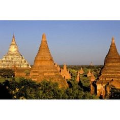 Temples of Bagan Surrounded by Trees Bagan Myanmar Canvas Art - Inger Hogstrom DanitaDelimont (35 x 24)