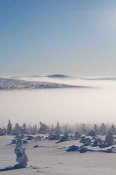 Morning Fog in Kaunispää, Finland Lappland, Places To Travel, Places To Visit, Lapland Finland, Seen, Beautiful Landscapes, Beautiful World, Photos, Travel