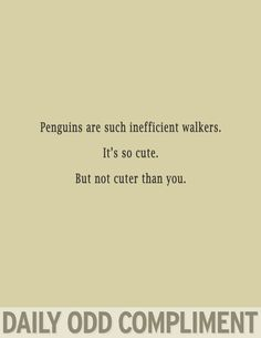 Penguins are such inefficient walkers.  It's so cute.  But not cuter than you.