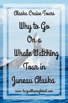 When you go on a cruise to Alaska you need to go on a whale watching tour as it is the place to see them, as in the summer months it is their feeding ground Alaska Cruise Tips, Alaska Tours, Alaska Travel, Cruise Travel, Cruise Vacation, Travel Usa, Travel Advice, Travel Tips, Travel Ideas