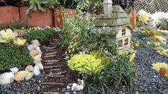 Miniature Fairy Garden Prairie Gardens Champaign Illinois