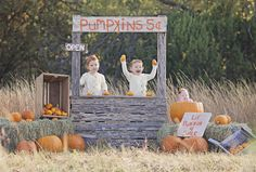 Fall mini session - Pumpkin Stand - Twins - Baby in Pumpkin - Pumpkin Patch Pumpkins for Sale.  Shelbi Williams Photography