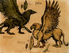 Gryphons are my favorite magical creature