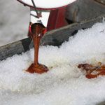 Sugar shack party: Get out to the sugar bush then host a maple syrup party