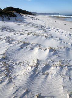 Voyage : les 30 plus belles iles de 2014 a visiter - ile de tasmanie