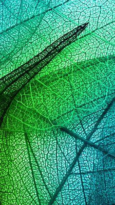 Leaves Art Green Blue Pattern #iPhone #5s #wallpaper
