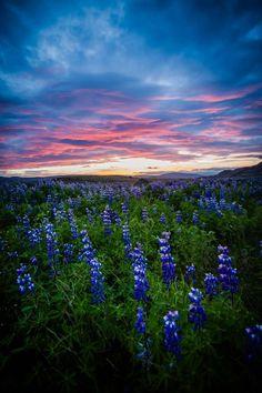 Beautiful sunrise in Iceland