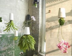 upside down plants - but how to stop the soil falling out - and how to water?!