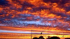 A spectacular sunset colours the South East sky of South Australia. (Image: ABC/Stuart Stansfield)