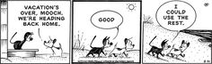 Mutts strip for August 31, 2017