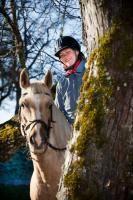 Kuusekännu ratsatalu Maine, Horses, Animals, Animales, Animaux, Horse, Animal Memes, Animal, Animais