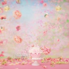 Cake Smash by Heidi Hope Photography #hhp #heidihope