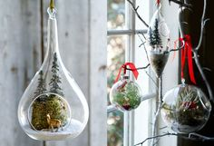 Christmas Terrariums in The BULLETIN at Terrain/eeek I have some tealight holders I could use for this! Cozy Christmas, 12 Days Of Christmas, Rustic Christmas, Christmas Holidays, Christmas Crafts, Christmas Decorations, Xmas, Christmas Ornaments, Holiday Wreaths