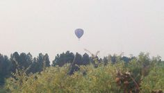 It is kind of surreal up here. In the middle of fire and smoke, someone is flying in a hot air baloon!