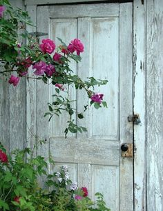 Lovely pink rose in front of this old shabby chic garden door