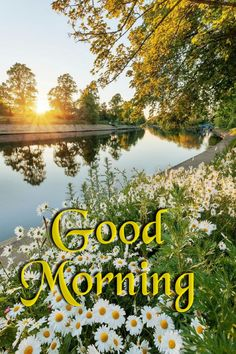 Good Morning Happy Monday, Morning Wish, Good Day, Good Morning Flowers Gif, Days Of Week, Good Afternoon, Day Wishes, Colorful Wallpaper, New Day