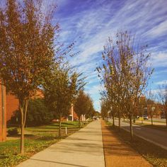 Fall really is the best by torikathryn