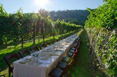 Wisdom Oak Winery-near Esmont