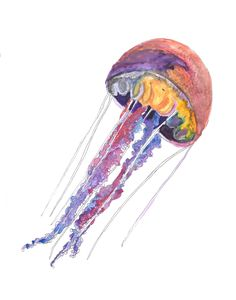 Tropical Jellyfish hand drawn watercolor illustration by RobertaTomei on Etsy